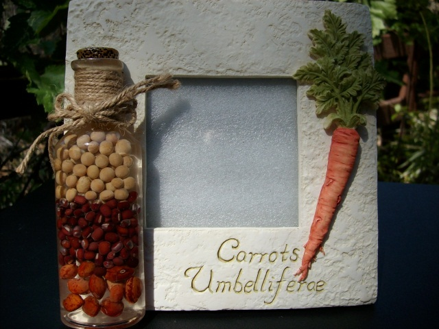 Carrotframe_1