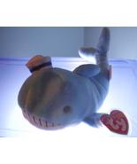 Captain Ty Beanie Baby MWMT 2005 - $5.99