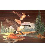 70's Fred SWENEY CANADIAN GEESE Calendar Art vi... - $19.50