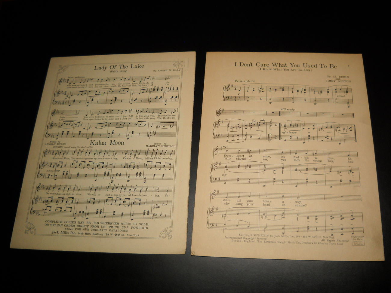 Sheet_music_i_don_t_care_what_you_use_to_be_dixie_hamilton_1924_jack_mills_05