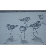 JO KO JOE KOCH OUTER BANKS ARTIST SANDPIPERS PRINT PIC - $19.95