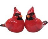 Cardinal-salt-pepper-shakers_thumb155_crop