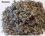4 ounces - Fresh Herb - Damiana - FREE SHIPPING