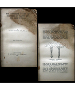 1897 Charles Darwin - Different Forms of Flower... - $20.00
