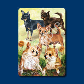 Cards_chihuahua