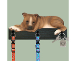 Buy Gifts and Collectibles - Brindle Pitbull Dog Leash and Kitchen Holder Gift