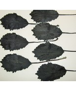 Vintage Millinery Flower Leaves 1950's BLACK Se... - $9.64