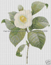 020 Bead Pattern Common Camellia Japonica Flowe... - $0.00