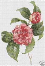 019 Bead Pattern Common Camellia Japonica Flowe... - $0.00