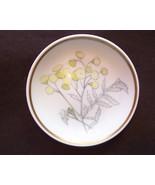 Richard Ginori Butter Pat ~ Botanical ~ Primave... - $8.99
