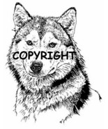 WOLF FACE new mounted rubber stamp - $7.23