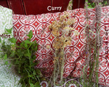 Mint, Curry, or Lavender Herb Special Fall Harvest Purchase