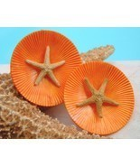 Vintage Starfish Tropical Earrings Round Tanger... - $17.95