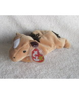 Ty Beanie Babies Baby Derby the Horse with star... - $5.00