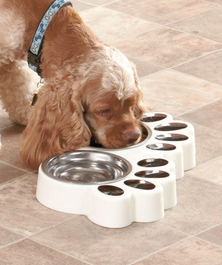 Image 1 of  White Paw Print Food & Water Buffets Dog Or Cat