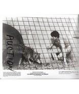 An American Werewolf in London David Naughton N... - $14.99