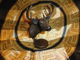tim rush bronze sculpture - $445.50