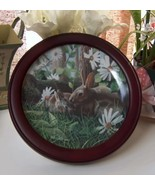 Vintage Framed Knowles Plate The Rabbit - $28.00