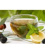 Lenier's English Style Flavored Amaretto Tea Ba... - $3.89