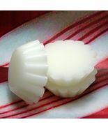 Peppermint Tart Melts (4) PURE SOY - $4.00