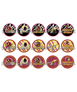 NFL Washington Redskins Zebra 1
