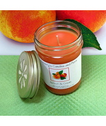 Apricot and Cream PURE SOY Jelly Jar Candle - $8.00