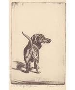 Diana Thorne 1935 The Tail of Hoffman Dacshund ... - $17.99