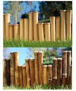 Bamboo Garden Border Edging- 8' Commercial Grad... - $49.00 - $54.00