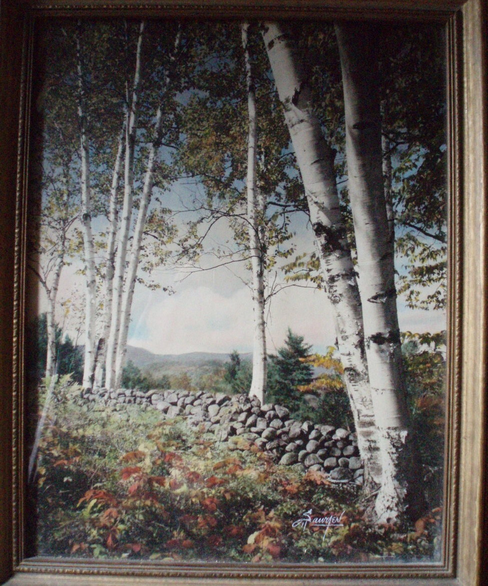 Charles H Sawyer hand paint photo Peaceful Sentinels