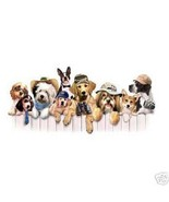 Boys Club Dogs    Dog Sweatshirt     Sizes/Colors - $18.81 - $25.96
