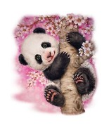 Cherry Blossom Panda Bear  Hoodie Sizes/Colors - $24.70 - $32.62