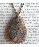 Last One! Natural Leopard Skin Jasper Teardrop ... - $4.99