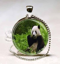 Panda China Wildlife Nature Glass Tile Jewelry ... - $10.99