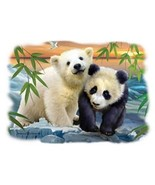 Two Bears Panda & Polar  Hooded Sweatshirt   Si... - $24.70 - $32.62