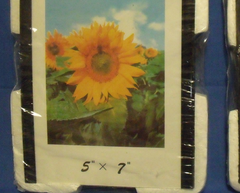 Magnetic_photo_frames_-_2