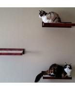 Amish Wood Cat Perch Wall Shelf - Cat Wall Perc... - $219.00