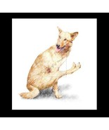 Yoga Dog 2 Re-Mastered Digital Art - $10.00