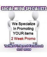 Social Media Specialists 14 Day Twitter Package... - $18.00