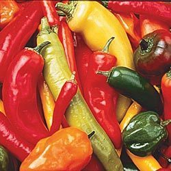 HOT PEPPER SEED MIX - 25 HOT PEPPERS FRESH SEEDS  FREE SHIPPING