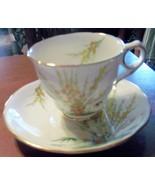 Cup and Saucer Broom Royal Stafford Bone China ... - $28.98