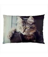 NEW PILLOW CASE HOME DECOR Kitten Cat Persian - $22.99