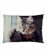 NEW PILLOW CASE HOME DECOR Kitten Cat Persian - $24.79