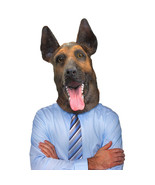 Buck German Shepherd Mask - $21.00