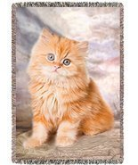 Red Persian Cat Kitten Woven Throw Blanket 54 X 38 - $97.02