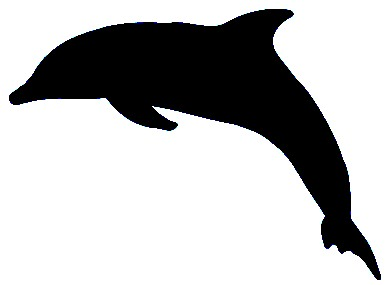 Dolphin Make Up Stencil- 5 Pack