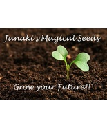 $SUPER CHARGED Wealth Seeds~Grow Your Own Magic... - $39.99