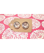 PERSIAN CAT kitty cute pair glass dome earrings... - $4.45