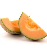 CANTALOUPE MELON SEEDS - 15 FRESH SEEDS  - $1.49