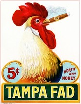 Tampa Fad Rooster Silly Chicken Vintage Cigar B... - $9.87