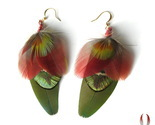 Fan_your_passions_feather_earrings_4_w_thumb155_crop